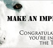 Make An Impression Group – Top Ten Banner by Owed to Nature