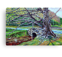 'The Old Tree at Bass Lake' Canvas Print