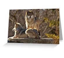 Keeper Of The Pack Greeting Card
