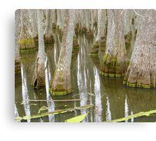 Bizarre Cypress Canvas Print