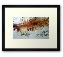 Scribbly Gum, Noosa, QLD, Australia - 2 Framed Print