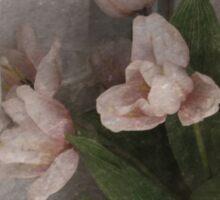Window Bouquet Sticker