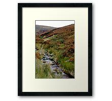 Lost in Ireland Framed Print