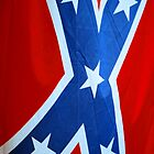 Rebel Flag by Angela Pritchard