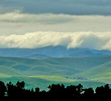 Springtime Foothill Panorama by John Butler