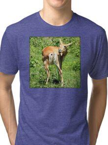 Funny Pose Of An African Steenbok Antelope Tri-blend T-Shirt