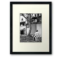 Sitting Alone - Peter Jackson Framed Print