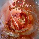 My Secret Place by Lozzar Flowers & Art