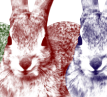 Colorfull Bunnies Sticker