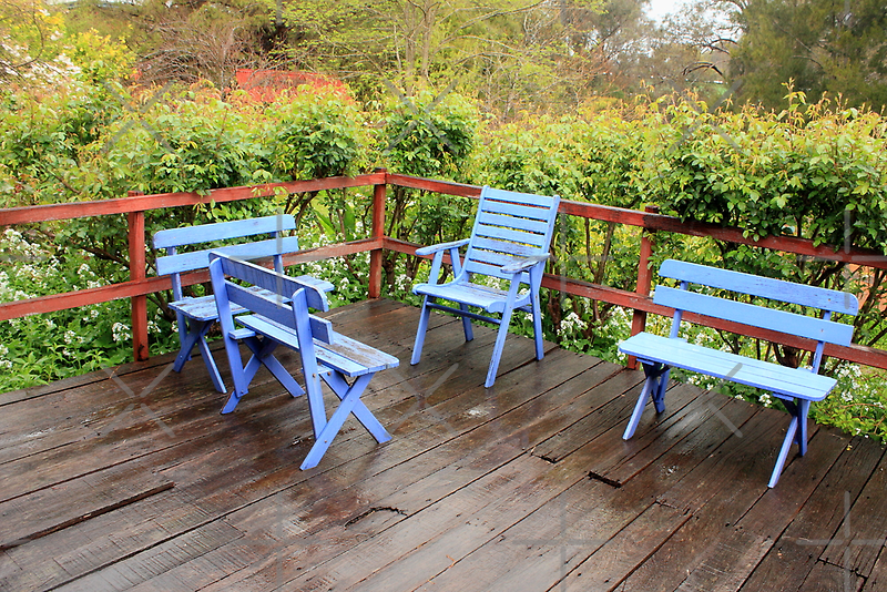 Blue Setting by Elaine Teague