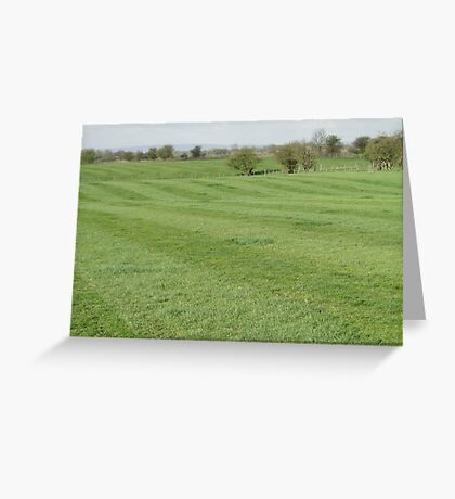 The Stripes Greeting Card
