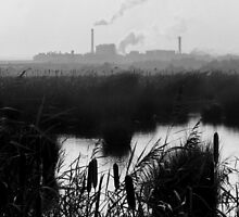 Nature v. Industry #1 by Graham Kidd