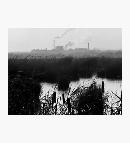 Nature v. Industry #1 Photographic Print