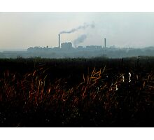 Nature v. Industry #2 Photographic Print