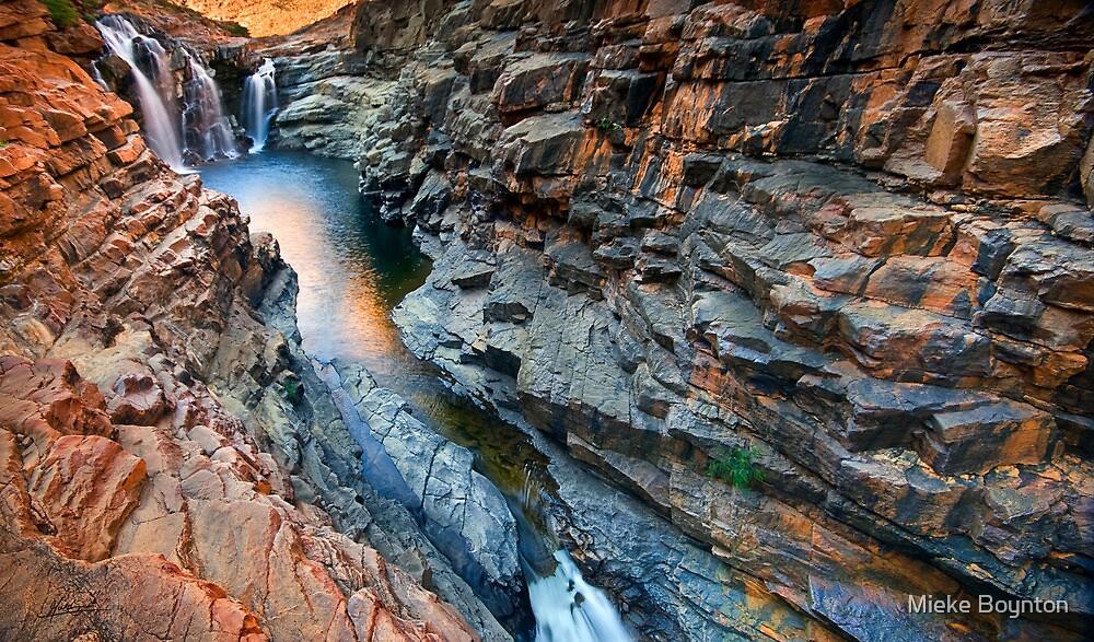 Lennard Gorge: A Wider View by Mieke Boynton