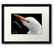 Egret ! Framed Print