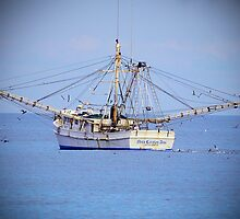 Miss Carolina Ann Fishing Boat by imagetj