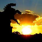 Prancing horses by Greg Parfitt