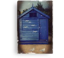 Birds Hut Canvas Print