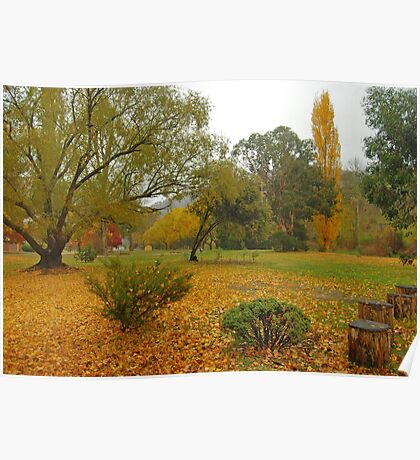 Autumn in Omeo Poster