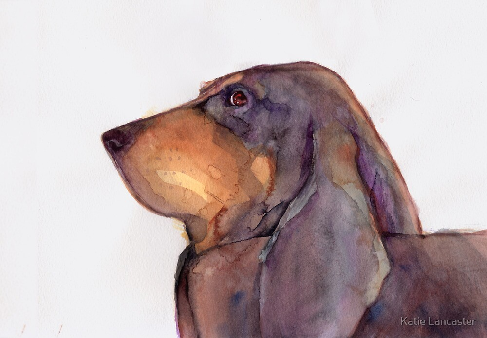 Beau, Bruno de Juro - watercolour by Katie Lancaster