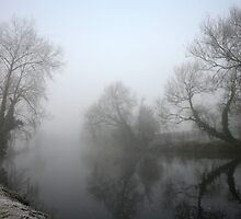 Fog on the River by Billy Galligan