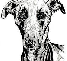 Whippet by Laura Dumbrell