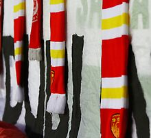 Shed End Invincibles Scarves by Billy Galligan