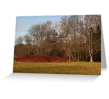 Welford colour around the lake  Greeting Card