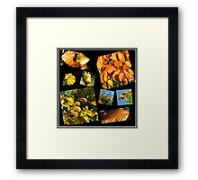 Autumn Leaves, Flowers and Berries Collage Framed Print