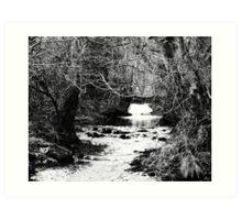 River walk Art Print