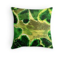 Shamrocks Suspended in Gold Throw Pillow
