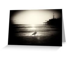 Strolling Seagull Greeting Card
