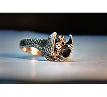Baby Dragon Ring (macro hdr) Photographic Print