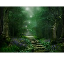 Spirit of the Woods Photographic Print