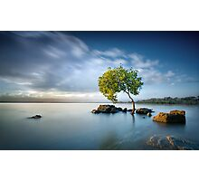 Zen Light Photographic Print
