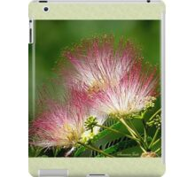 Mimosa ~  An Exotic Flowering Tree iPad Case/Skin