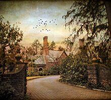 Beyond the Gates by Jessica Jenney