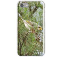 Yellow Throated Miner iPhone Case/Skin