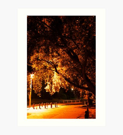 Park N Ride. Art Print