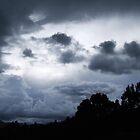 Thunderstorm by Trudi Skinn