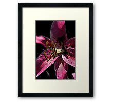 The Dark Side of Flowers 1 Framed Print