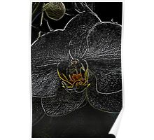 The Dark Side of Flowers 4 Poster
