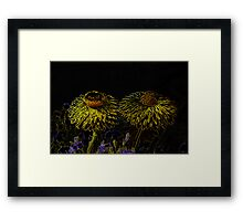 The Dark Side of Flowers 6 Framed Print