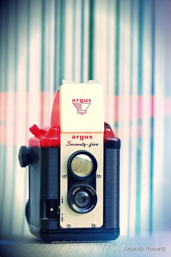 Argus by Amanda Roberts