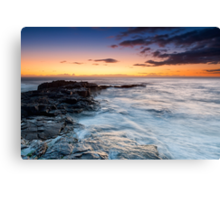 Morning Fisher -3 Canvas Print