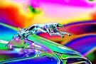 Ford Greyhound by Vicki Pelham