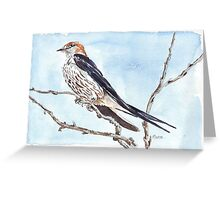 I'll wait for your return... Greater striped swallow Greeting Card