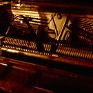 the piano has been drinking by greg angus
