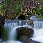 Thredbo Falls by Trudi Skinn